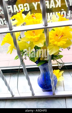 Bouquet of yellow Jonquils in flower shop window. Rawa Mazowiecka Poland - Stock Photo