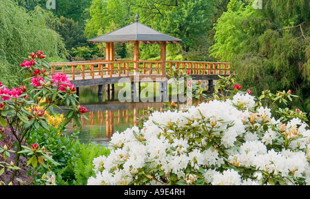 Japanese Garden in the spring Szczytnicki City Park Wroclaw Lower Silesia Poland - Stock Photo