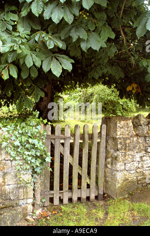 Rustic country gate - Stock Photo
