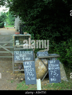 Fresh Eggs for Sale at the Farm Gate - Stock Photo