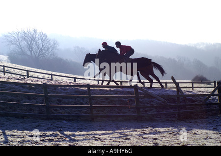 two horses with jockeys are racing in Cotswolds, UK - Stock Photo