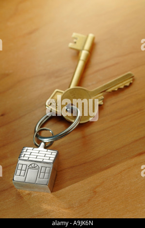 House keys on key shaped keyring - Stock Photo