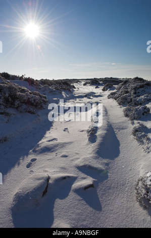 fresh snow Froggatt edge Derbyshire Peak district national park England UK GB EU Europe - Stock Photo