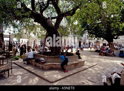 Lamu Town square in Kenya Africa - Stock Photo