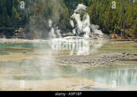 Horizontal shot of one of the many geysers in Norris Basin in Yellowstone National Park - Stock Photo