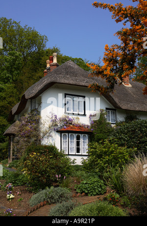 Beehive Cottage, New Forest, Hampshire, England - Stock Photo