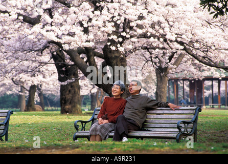 Lovely old Japanese couple sitting on wooden bench surrounded by cherry blossoms in Tokyo park - Stock Photo