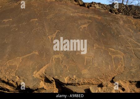 Rock engraving made by San people or Bushmen Twfelfontein National Monument Damaraland northern Namibia Africa - Stock Photo