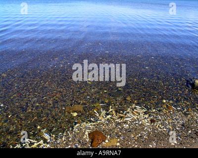 The sea bed seen through the calm water - Stock Photo