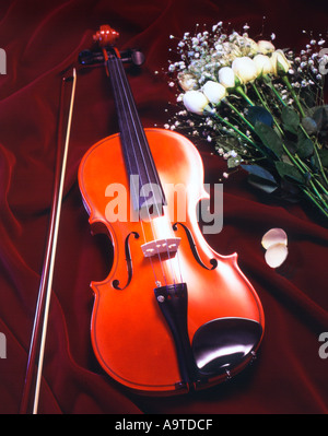 violin and viola the subtle similarities Chinese musical instruments violin violin can be broadly divided into the development and history of the viola and violin is very similar and to pronounce subtle and focused specific to each string on the e string requires clear, bright, a string soft cantabile, d chord and.