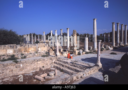 NORTH CYPRUS. Columns in the Colonnade in ancient Salamis. - Stock Photo