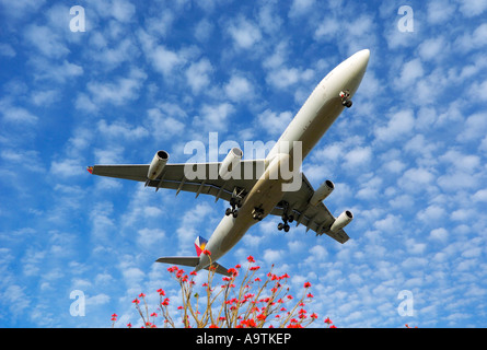 Arriving at LAX after a long flight over the Pacific, Los Angeles CA - Stock Photo