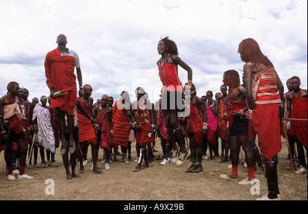 Lolgorian, Kenya. Siria Maasai Manyatta; group of moran doing their traditional 'ipid' jumping dance. - Stock Photo