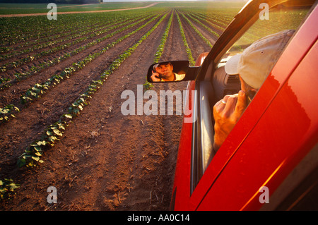 A farmer reflected in his truck mirror talks on his cell phone early growth cotton field in afternoon light in background - Stock Photo