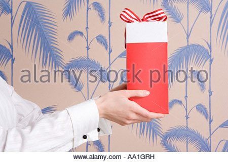 Woman holding a gift - Stock Photo
