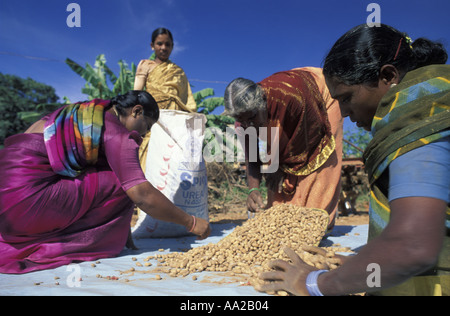 INDIA Project supported by Ford Foundation in India photographed on