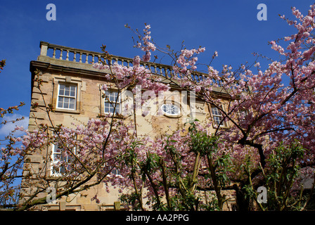 spring at winster hall - Stock Photo