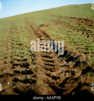 Low angle view of dirt tyre tracks marks on a green grass field with sky on a farm in Carmarthenshire Wales UK  - Stock Photo