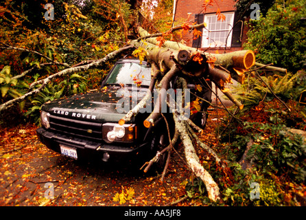 A Land Rover sits in the driveway where it was hit by a falling tree - Stock Photo