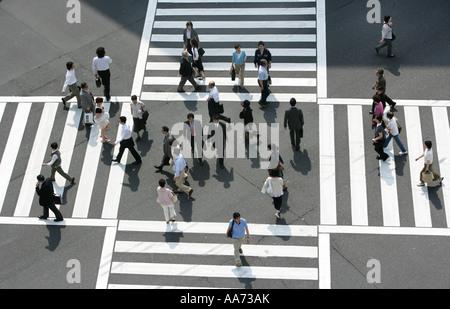 JPN Japan Tokyo Big pedestrian crosswalk Harumi Dori street and Sotobori Dori Ginza elegant shopping and entertainments - Stock Photo
