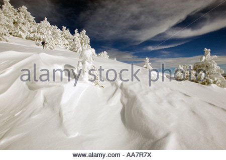 Cross-country skier in snow - Stock Photo