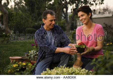 Mature couple gardening together - Stock Photo