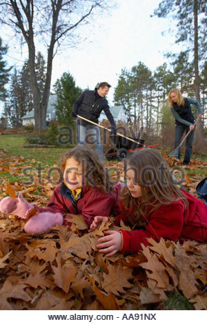 Young girls playing in autumn leaves while parents rake - Stock Photo