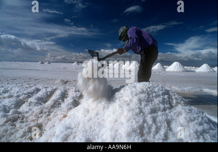 Bolivia, salt production at the Salar de Uyuni. - Stock Photo