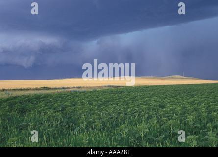 AJ12773, SD, South Dakota - Stock Photo