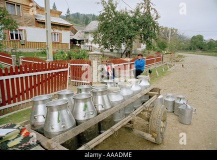 milk churn collection in Romania By horse and cart - Stock Photo