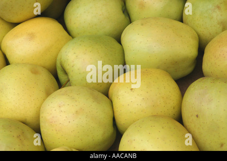apples at a market - Stock Photo