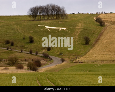 The Hackpen or Broad Hinton or Winterbourne Bassett white horse in the county of Wiltshire, England, UK - Stock Photo