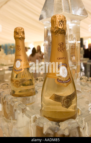 Luxury Cristal Champagne in Ice Bar - Stock Photo