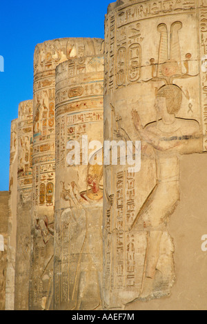 Hippostyles of the Temple of Haruris at Kom Ombo, Egypt - Stock Photo