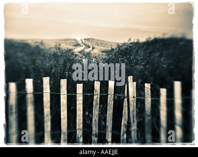 snow fence on beach - Stock Photo