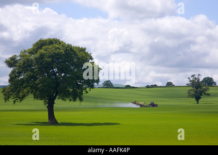 Farm tractor spraying insecticide onto green fields of english countryside in summer sun near Lyth Hill Shropshire - Stock Photo
