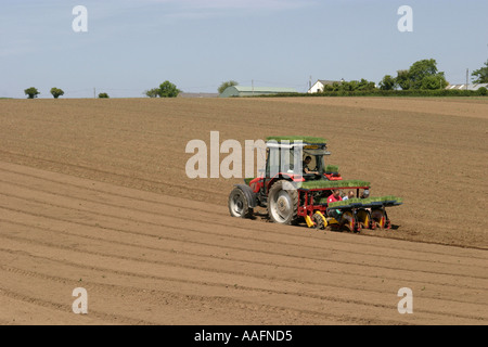 Planting crops using a tractor near newtownards county down northern ireland - Stock Photo