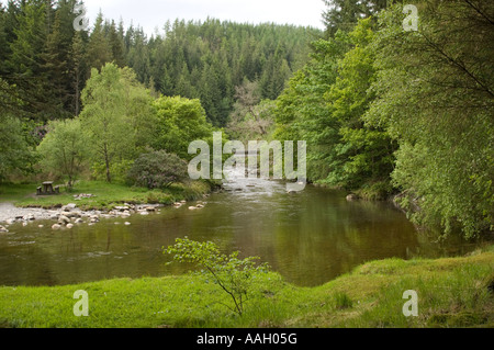 The river Ystwyth flowing through deciduous woodland in the Hafod Estate forestry park near Pontrhydygroes Ceredigion - Stock Photo