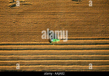 Aerial view of combine harvester working on a farm - Stock Photo