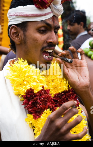 """the festival of thaipusam Thaipusam: a festival of thanksgiving and devotion published on 02 february  2018