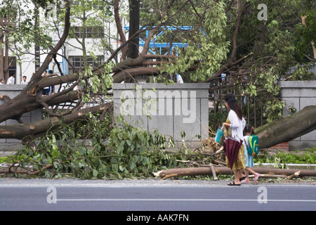 People Walking Past Aftermath Of Typhoon - Stock Photo