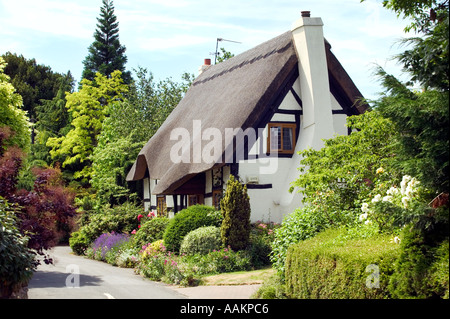 A thatched cottage in the village of Little Comberton in Worcestershire UK - Stock Photo