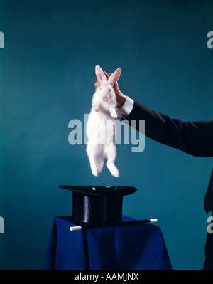HAND OF MAGICIAN PULLING WHITE RABBIT OUT OF BLACK TOP HAT TRICK TRICKS MAGIC MAGICIANS RETRO VINTAGE ENTERTAINMENT - Stock Photo