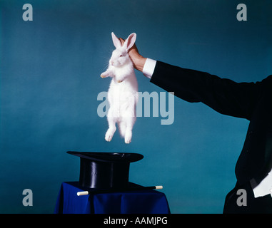 HAND OF MAGICIAN PULLING WHITE RABBIT OUT OF BLACK TOP HAT TRICK MAGIC TRICKS RETRO VINTAGE ENTERTAINMENT MAGICIANS - Stock Photo