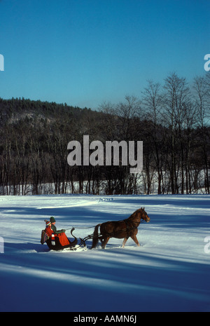 HORSE DRAWN SLEIGH NORTH CONWAY NH - Stock Photo