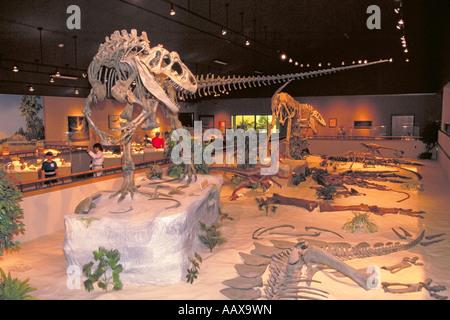 Elk256 1994 North Dakota Dickinson Dakota Dinosaur Museum - Stock Photo