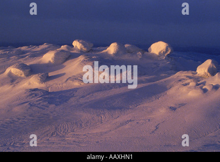 Nature's sculptures highlighted across field of  windblown snow in low light - Stock Photo