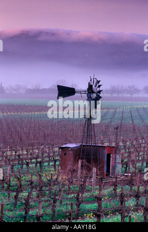 Old Windmill in Napa Valley Vineyards in winter with fog rolling over coastal hills vertical - Stock Photo