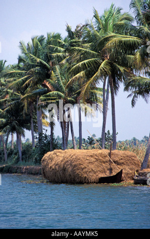 Kerala Backwaters, India. - Stock Photo