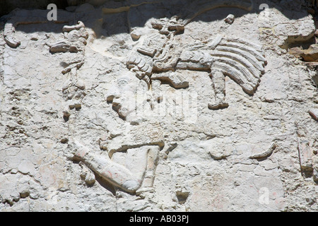 Stone carving on wall, El Palacio, The Palace, Palenque Archaeological Site, Palenque, Chiapas, Mexico - Stock Photo